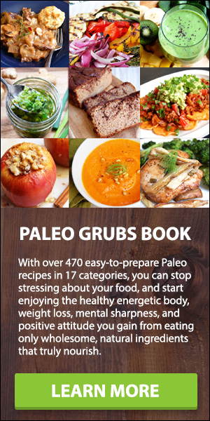 recommended paleo book